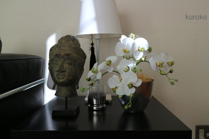 高速ターミナル花市場で買った胡蝶蘭装飾例