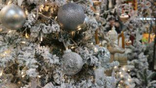 クリスマス一色のソウル花市場の画像